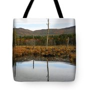 Autumn Wetlands Tote Bag