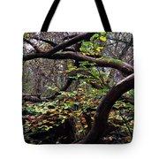 Autumn Wild Nature Denmark Tote Bag