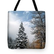 Autumn Winter Colors 2 Tote Bag
