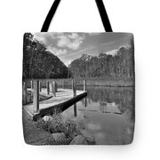 Autumn Without Color Tote Bag