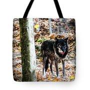 Autumn Wolf Tote Bag