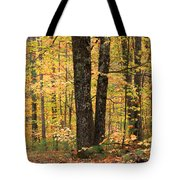 Autumn Woods 1 Tote Bag