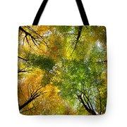 Autumnal Display Tote Bag