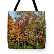 Autumnal Foliage Tote Bag