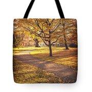 Autumnal Park Tote Bag