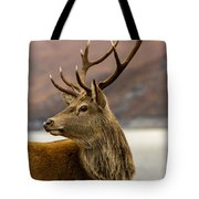 Autumnal Stag Tote Bag