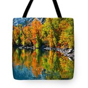 Autumn's Beauty Reflected Tote Bag