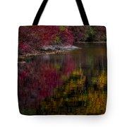 Autumns Color Pallette Tote Bag