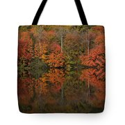 Autumns Design Tote Bag by Karol Livote