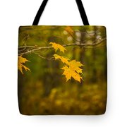 Autumns Fast Approach Tote Bag