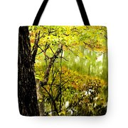 Autumn's First Reflections II Tote Bag
