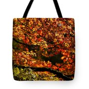 Autumn's Glory Tote Bag by Anne Gilbert