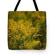 Autumn's Gold 2013 Tote Bag