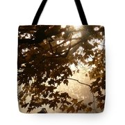 Autumns Golden Morning Tote Bag