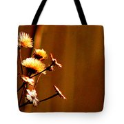 Autumn's Moment Tote Bag