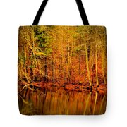 Autumn's Past Tote Bag