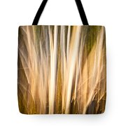 Autumn's Promise 15 Tote Bag