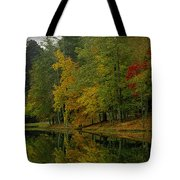Autumns Reflection Tote Bag