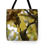 Autumn's Wondrous Colors 1 Tote Bag