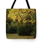 Autumn's Wondrous Colors 4 Tote Bag