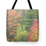 Autumntrees And Fog Tote Bag