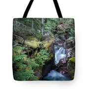 Avalanche Creek In Cedar Forest Tote Bag