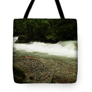 Avalanche Creek Tote Bag