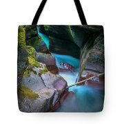 Avalanche Gorge Glacier National Park Painted   Tote Bag