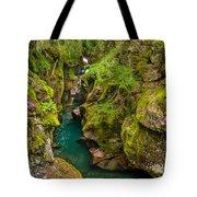 Avalanche Gorge In September Tote Bag