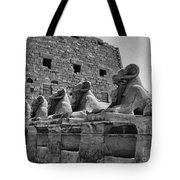 Avenue Of Sphinxes Tote Bag