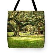 Avery Island Oaks Tote Bag by Scott Pellegrin
