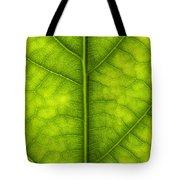 Avocado Leaf Tote Bag