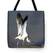Avocet Dancer Tote Bag