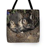 Fox-avoidance Tote Bag