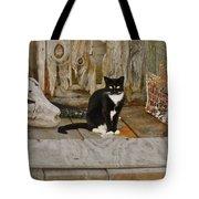 Avon Harbor Bxw Cat 9/05 Tote Bag