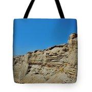 Avon Pier Crab On The Dune Cut 8/24 Tote Bag
