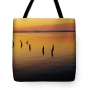 Awaiting The Sun's Return Tote Bag