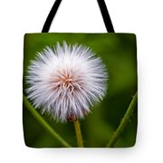 Awaiting The Wind Tote Bag
