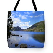 Awaken With Spring Tote Bag by Elizabeth Dow
