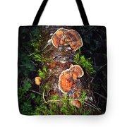 Awe Inspiring Fungi Tote Bag