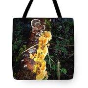Awe Inspiring Fungi Two Tote Bag