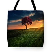 Awesome Solitude Tote Bag