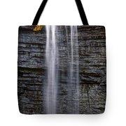 Awosting Falls Tote Bag
