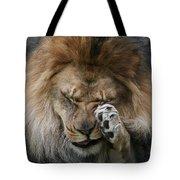 Awwwww..... #2 Tote Bag