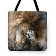 Awwwww..... Tote Bag