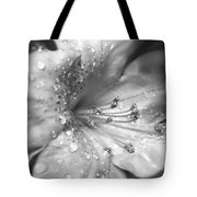 Azalea Flower With Raindrops Monochrome Tote Bag
