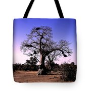 Babobab Tree Tote Bag