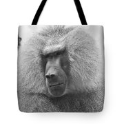 Baboon In Black And White Tote Bag