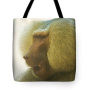 Baboon In The Sun Tote Bag
