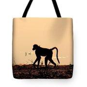 Baboon Sunset Tote Bag